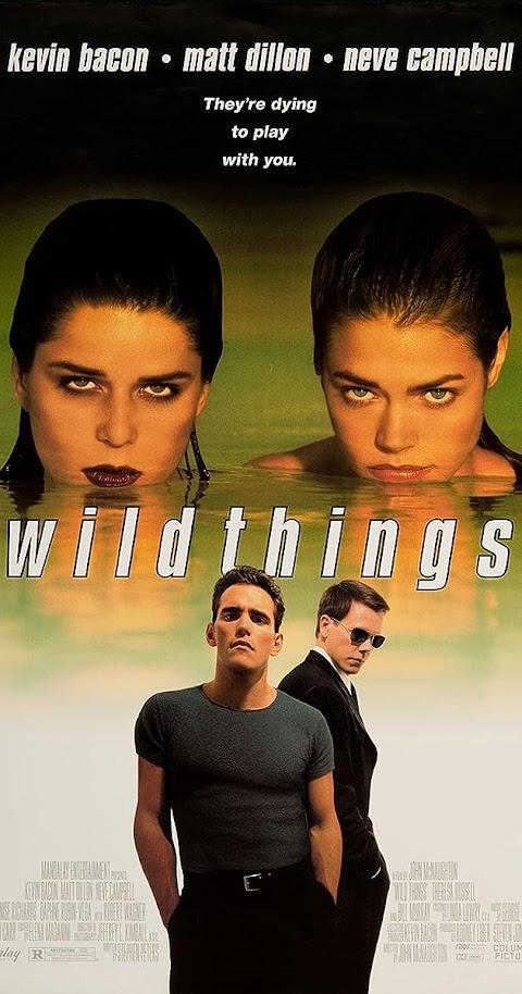 Wild Things (1998) 480p 720p BluRay Dual Audio (Hindi+English) Full Movie