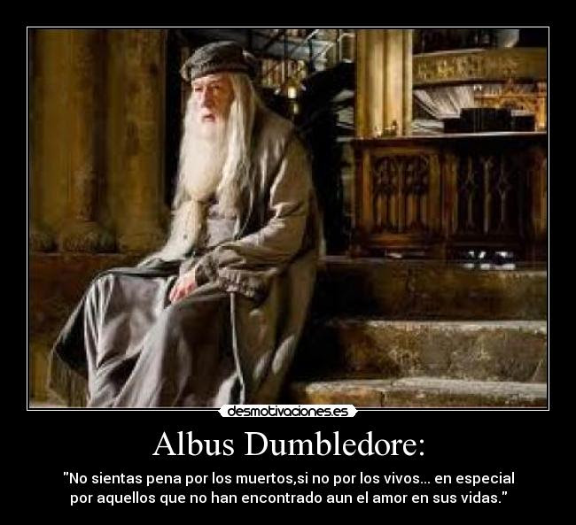Harry Potter Frases Celebres