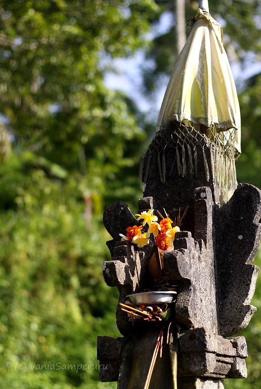 Tegalalang, Ubud, Bali.