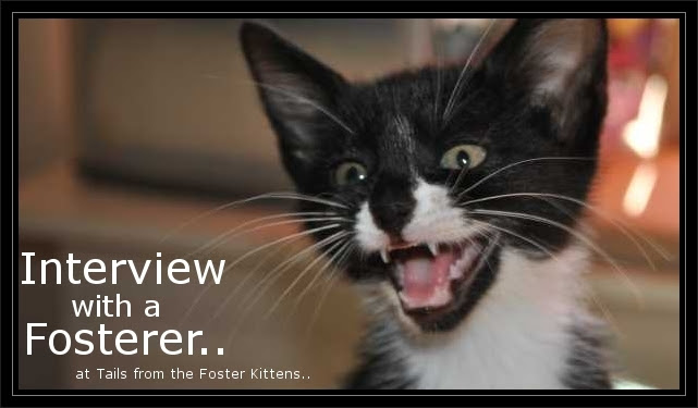 Interview with a Fosterer badge