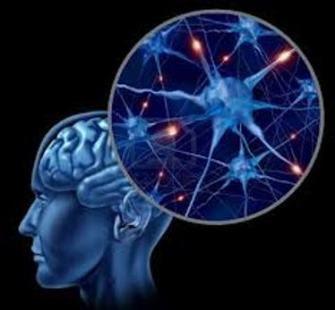 ondas cerebrales II