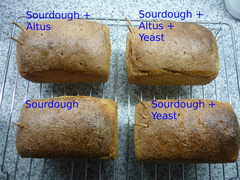 Detmolder Sourdough With And Without Yeast - Comparison ...