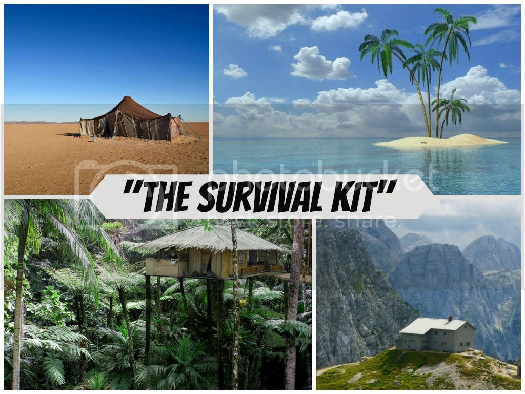 photo modest-mix-collage-survival-kit_zpse2196351.jpg