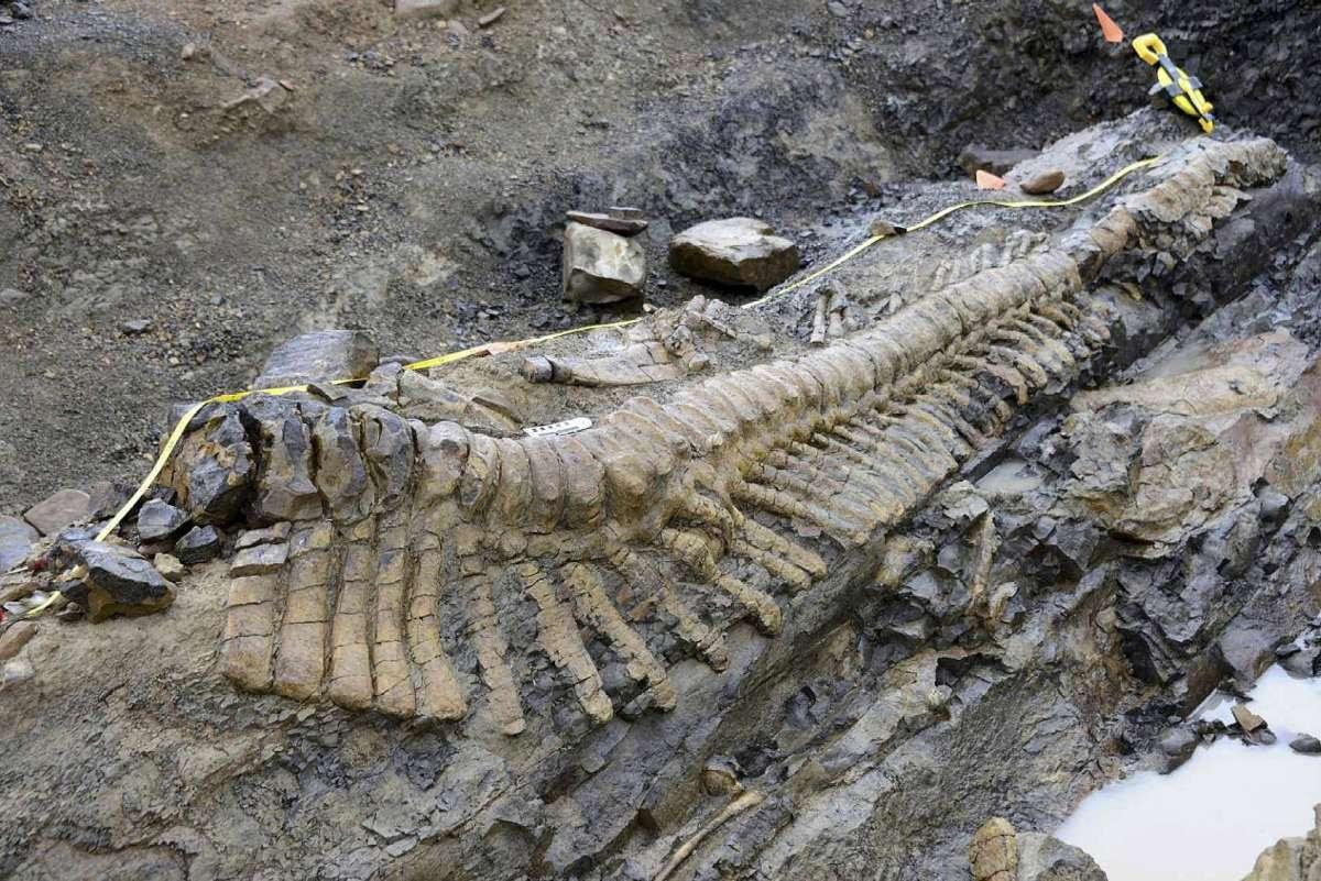 Период динозавров закончился не так давно как нам рассказывают