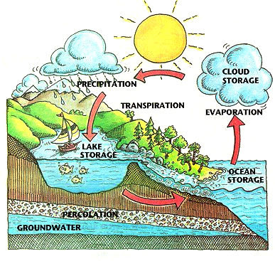 H20cycle