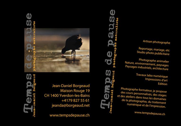 Contact Us Jean Daniel Borgeaud Wildlife Photographer