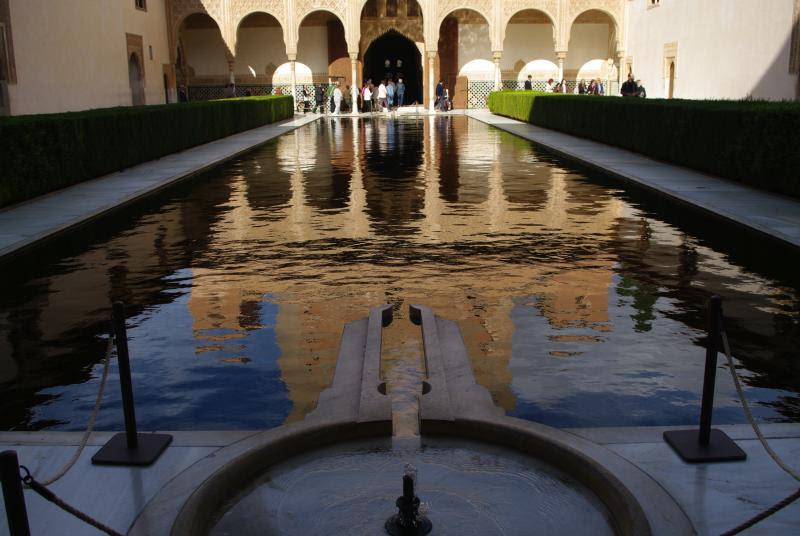 Wild Tigris - Alhambra roadtrip