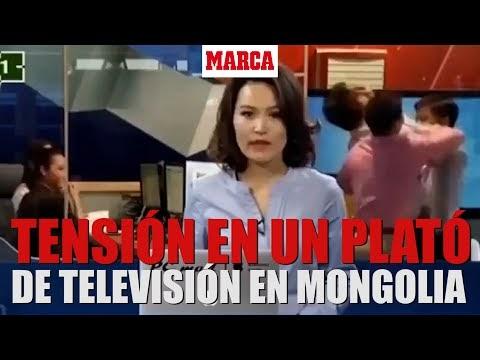 Dos periodistas se enfrentan a golpes durante transmisión en vivo por televisión