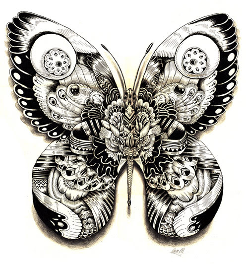 04 AnimalDrawing in Incredibly Amazing Animal Illustrations by Iain Macarthur