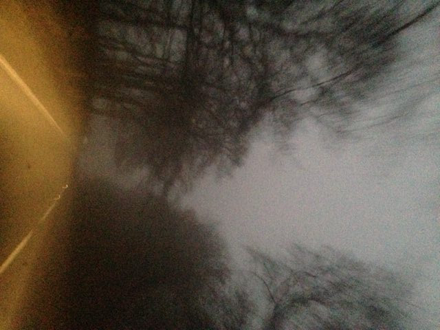 Horror Bites Image #5 - http://getwordy.com/wp-content/uploads/2017/01/misty-path.JPG-e1484414860948.jpeg