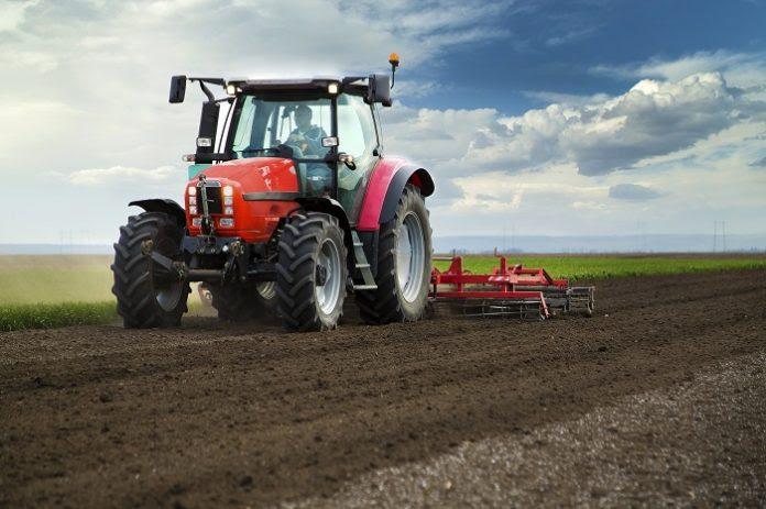 Εαρινές σπορές: Ποιες καλλιέργειες κερδίζουν την εμπιστοσύνη των γεωργών