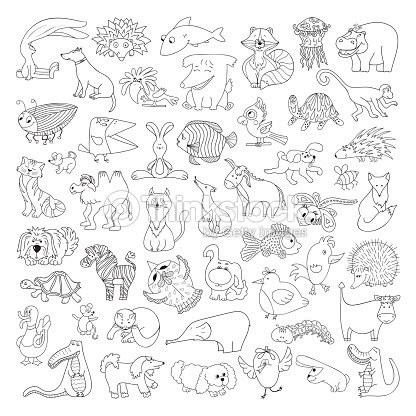 Dibujos De Animales Salvajes Y Domesticos Para Colorear