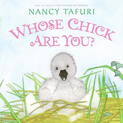 Cover image for Whose chick are you?