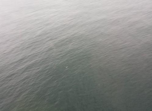 Bombeiros encontraram destroços no mar (Foto: Corpo de Bombeiros/Divulgação)