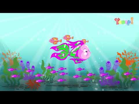 VOCÊ SABIA? - Você sabia que existem cerca de 24 mil espécies de peixes?
