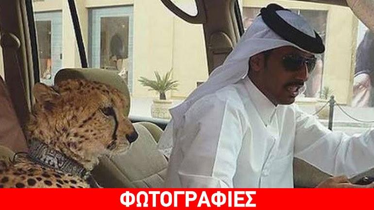 Εικόνες που μπορείτε να συναντήσετε μόνο στο Ντουμπάι