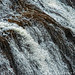 Yellowstone Abstract 7