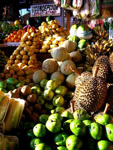 concepcion fruit stand