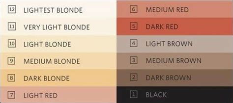 color scale  perfect hair color hair colors pinterest colors hair  tips