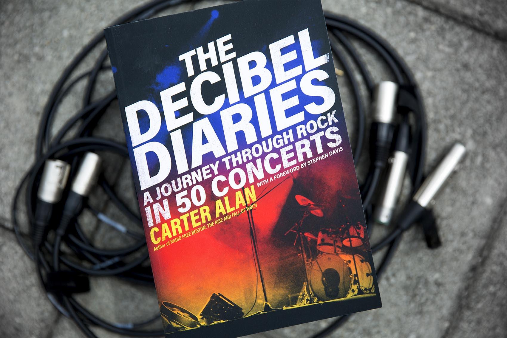 Image result for the decibel diaries