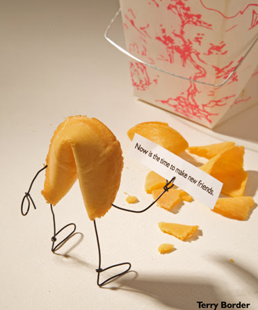 Funny bento objects by Terry Border - fortune cookie