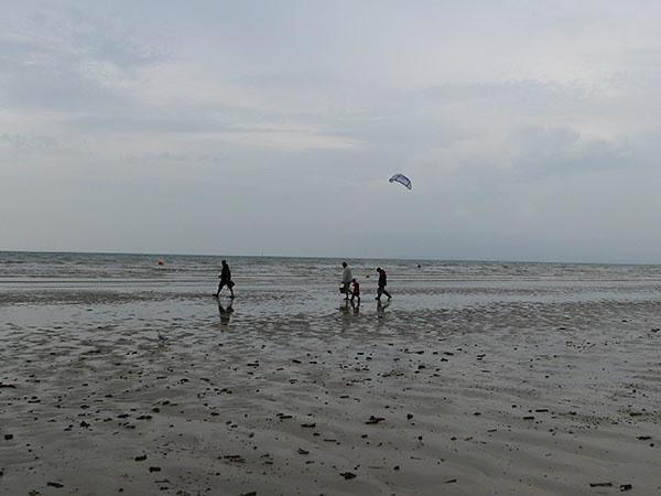 pêche aux coques