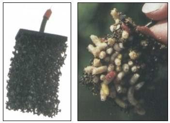 Фидерная кормушка лабиринт