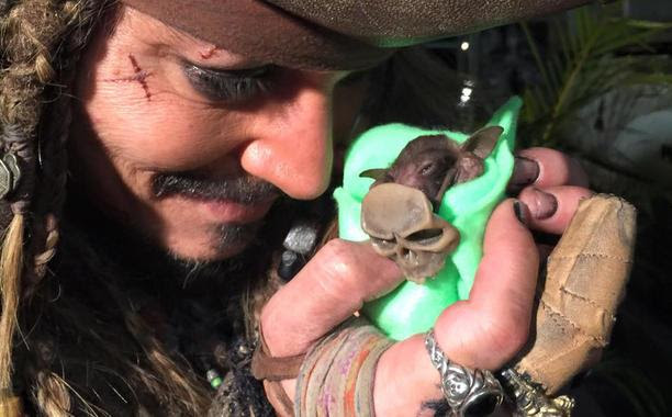 Watch Johnny Depp bottle feed an orphaned baby bat as Jack Sparrow: http://t.co/0gQMpbak0l