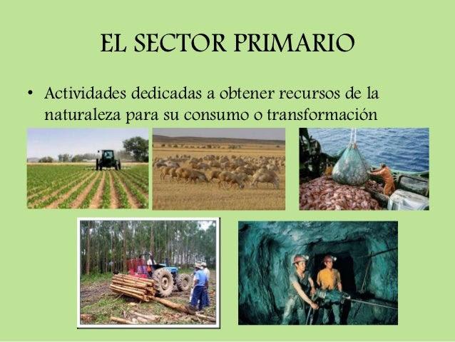 EN SEXTO ESTAMOS ACOMPAÑA2: TEMA 3 SECTOR PRIMARIO Y SECUNDARIO EN ...