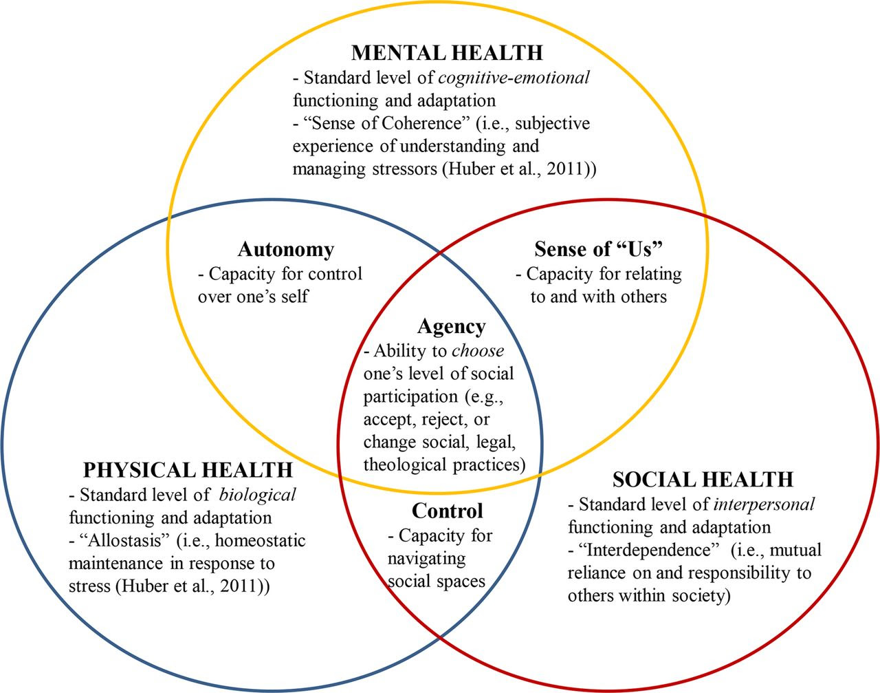 What is mental health? Evidence towards a new definition ...