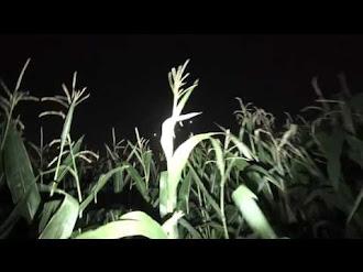Close Encounter - UFO lights Caught on Tape!! / Luces OVNI Captadas en Video - Encuentro Cercano