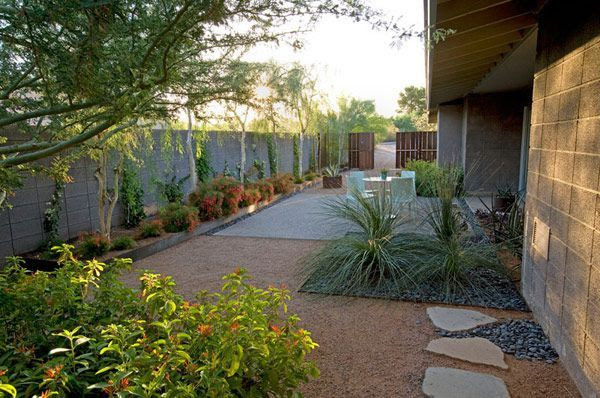 Drought Tolerant Yard Landscaping Ideas