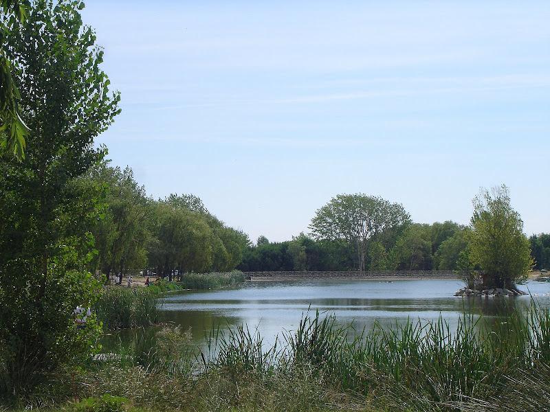 Lago de Butarque