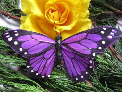 Butterflies images Purple Butterfly wallpaper and ...