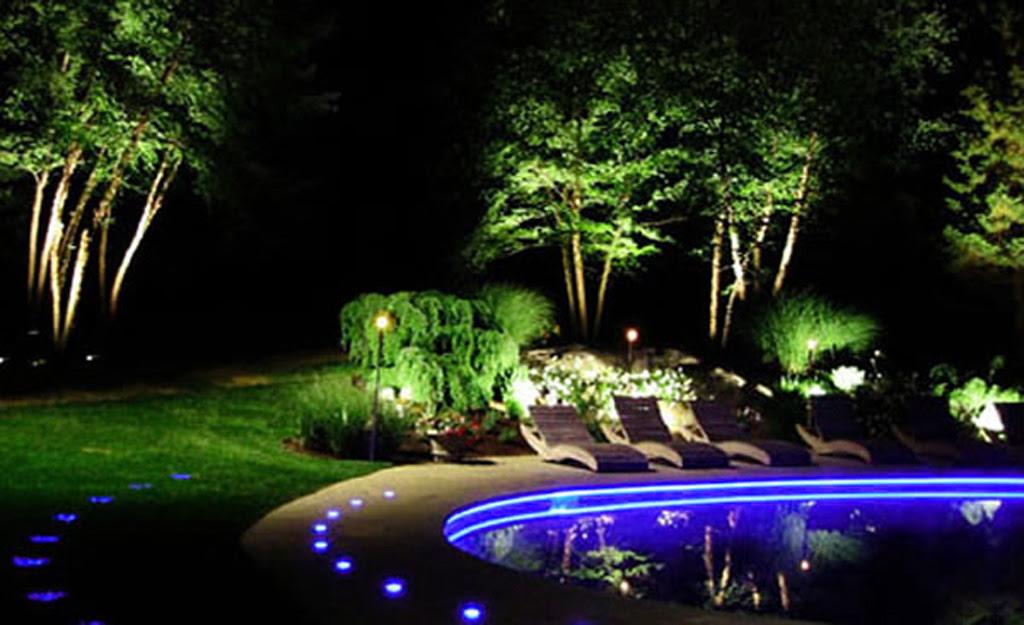 Blue LED Landscape Lights1