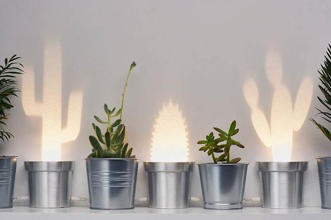 Cute Cactus Lamp από τον Chen Bikovski