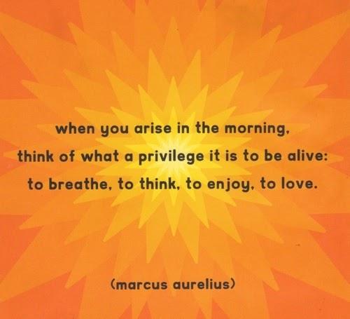 Marcus Aurelius Quotes: When You Arise In The Morning