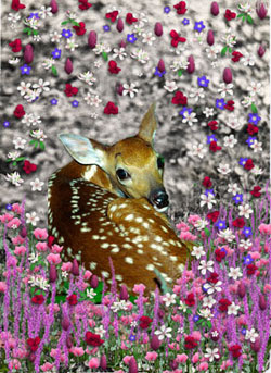 Bambi in Flowers II