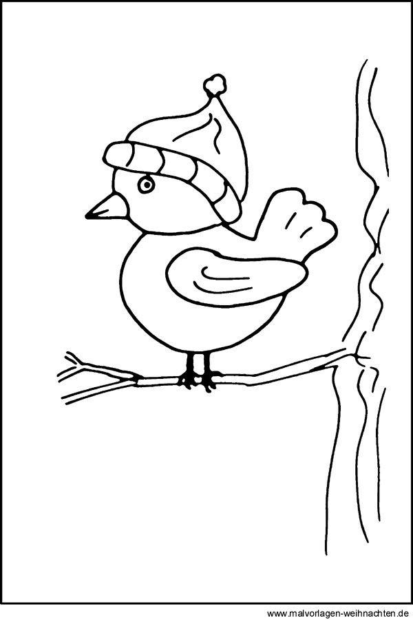 vogel bild vogel im winter bilder