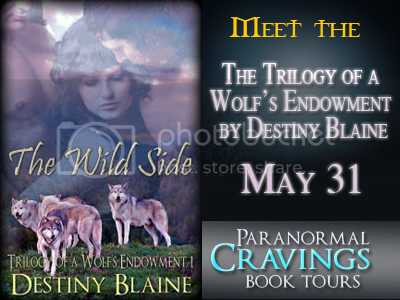 Wolf's Endowment Trilogy Banner Wide photo Trilogy-of-a-Wolfs-_banner1.png