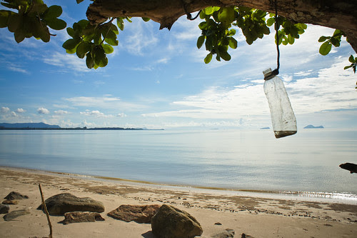 Sunlight Bottle