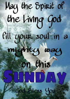 Wweroaddogg At Tracytejames5 Sunday Blessings For You Your Family