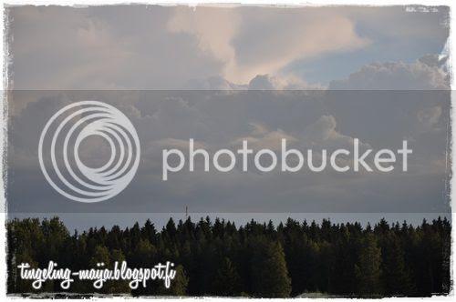 photo DSC_1007crop.jpg