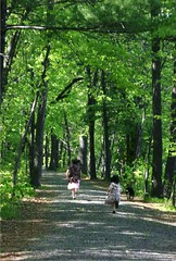 Girls Running on Trail at William O'Brien State Park - Homeschool Phy Ed