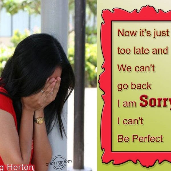 I Am Sorry I Cant Be Perfect For I Am Sorry Quotes For Best