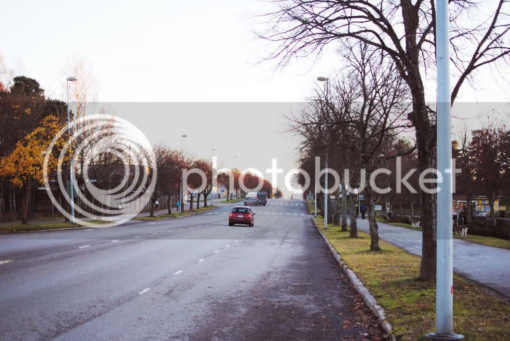 photo DSC_0042_zpsdb412443.jpg