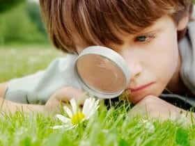 Actividades para niños en el parque y naturaleza