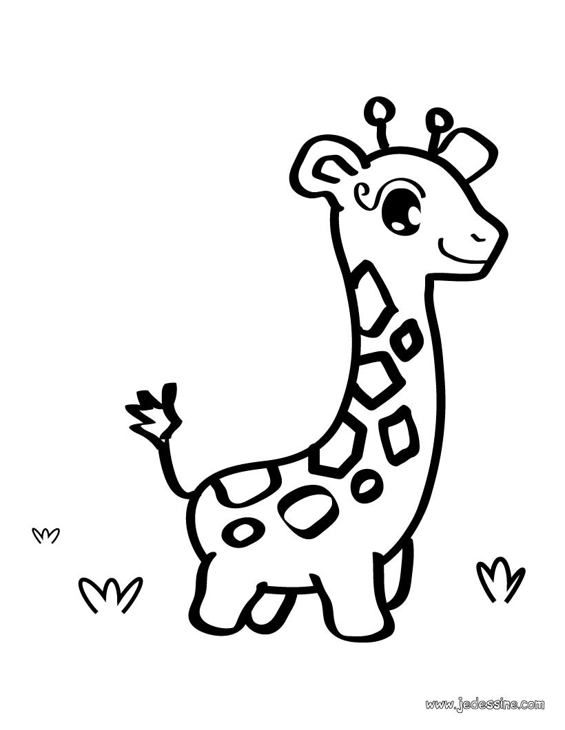 Coloriage d une girafe