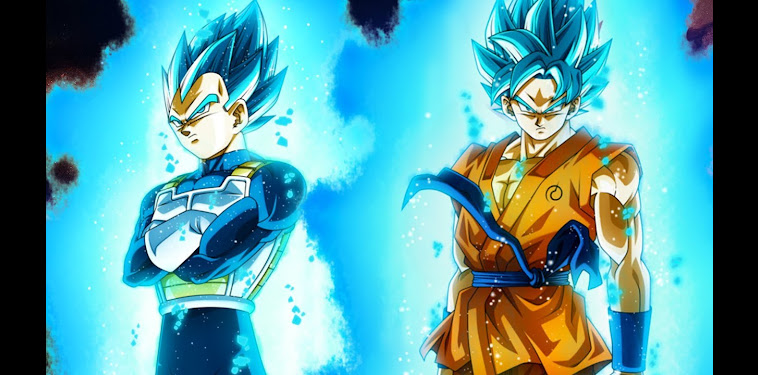 Dragon Ball Super Goku And Vegeta Super Saiyan Blue