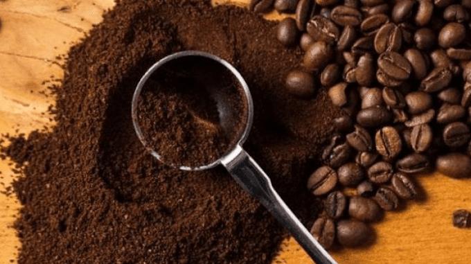 8 Cara Mengusir Kecoa dari Rumah, Dijamin Ampuh! oleh - rahasiakulitcantik.online